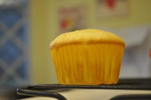 decoy plain cupcake